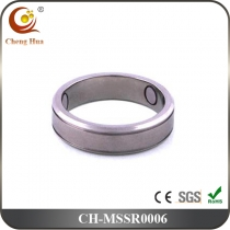 Stainless Steel & Titanium Magnetic Ring MSSR0006
