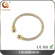 Stainless Steel & Titanium Bangle SSBL0130