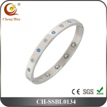 Stainless Steel & Titanium Bangle SSBL0134