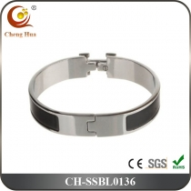 Stainless Steel & Titanium Bangle SSBL0136