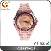 Stainless Steel Watch SSW0023