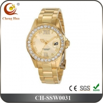 Stainless Steel Watch SSW0031